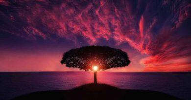 Magie přírodních živlů a světových stran