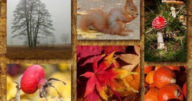 Podzimní rovnodennost