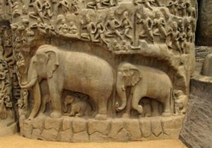 elephants-573776_1280