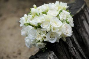 flower-393051_1280
