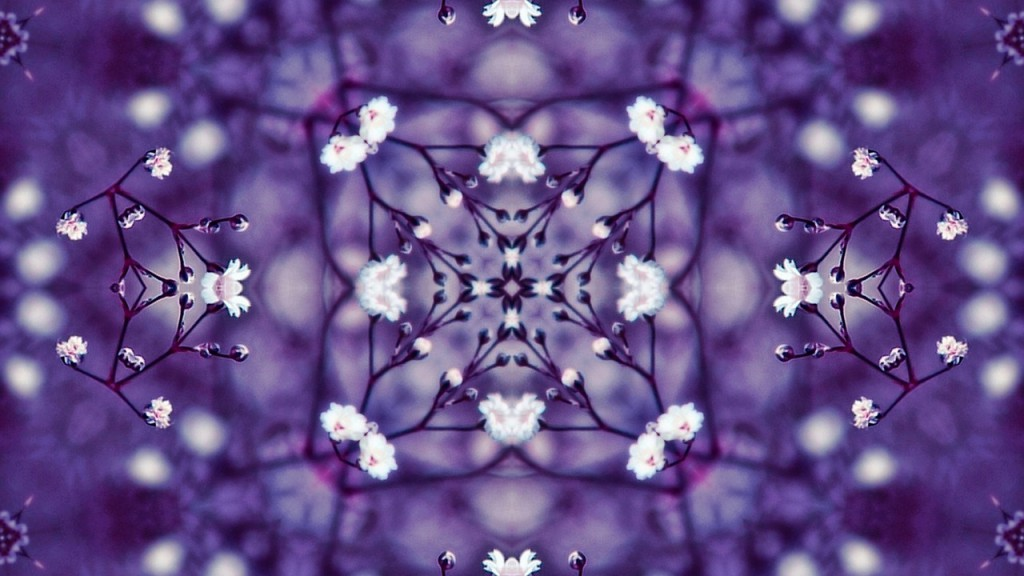 flowers-1548798_1280