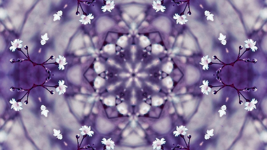 flowers-1548802_1280