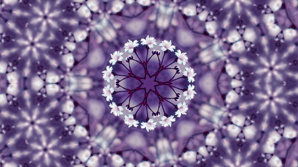 flowers-1548804_1280