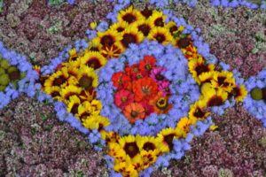 flowers-1591483_1920
