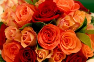 flowers-171461_1280