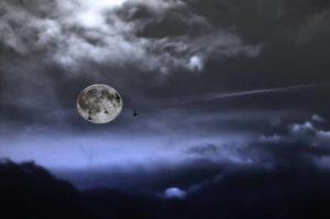 full-moon-496197_1280