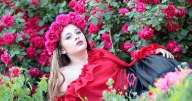 Kouzlo romantických růží