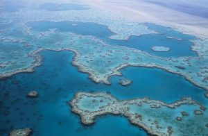 great-barrier-reef-527987_1280