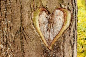 heart-402975_1280