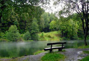 nature-242110_1280