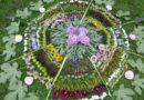 Kouzlo květinové zahradní mandaly
