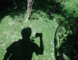 shadows-261586_1280