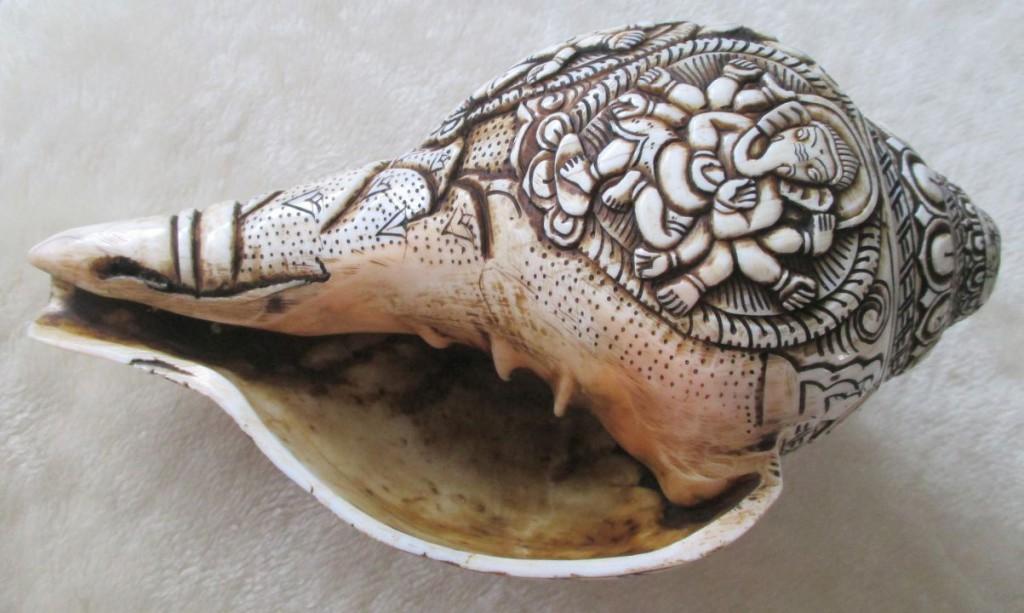 snail-1742550_1920
