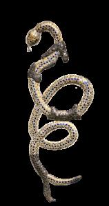 snake-1324014_1920