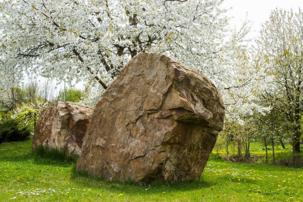 spring-740398_1280