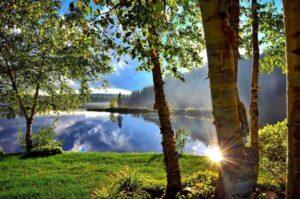 summer-landscape-1500748_1280