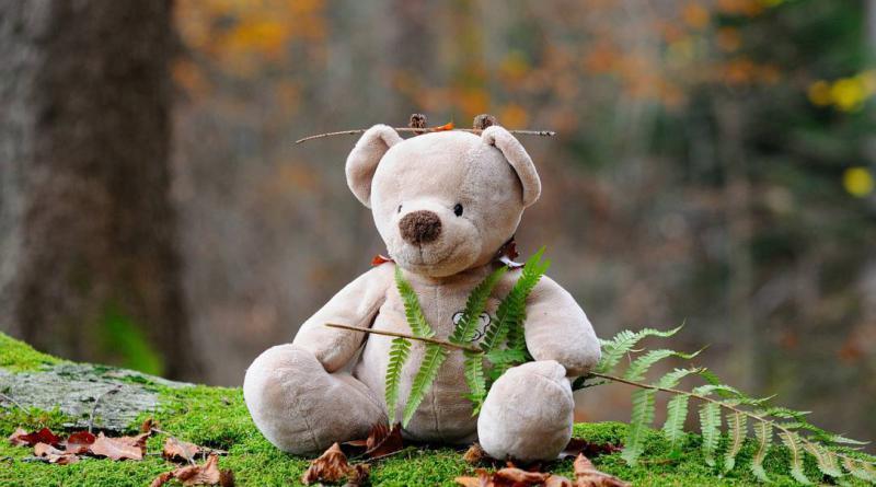 teddy-bear-524251_1280
