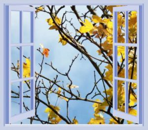 window-211632_1280