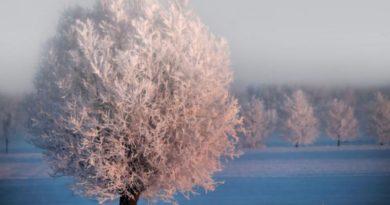 Zimní slunovrat a nejkratší den v roce