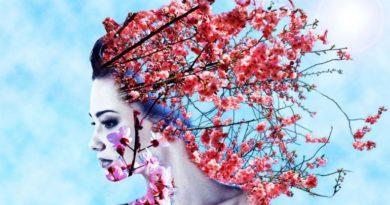 Jabloň, jedle, kaštan - energie stromů
