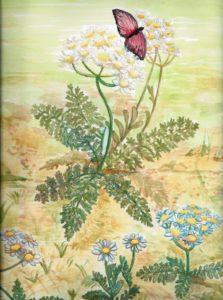 butterfly-1374737_1920