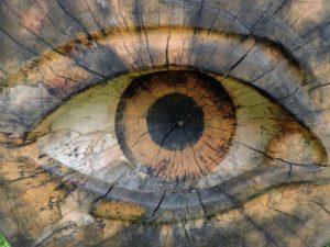 eye-1572760_1920