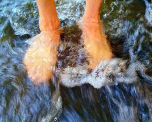 feet-799062_1280 (1)