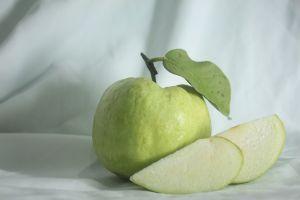 Jablečný ocet pro úspěšnou redukční kůru