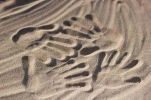 handprints-500659_1280