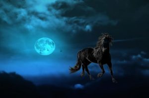 horse-1095046_1280