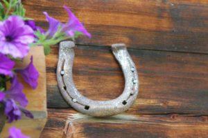 horseshoe-590480_1280