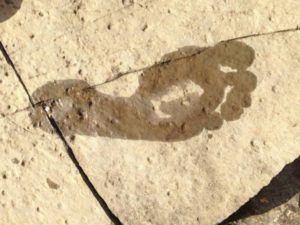footprint-648194_1280