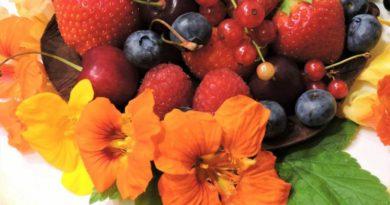 Jedlé květy - lichořeřišnice