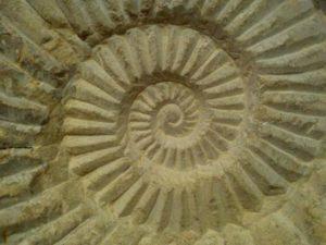 spiral-633860_1280