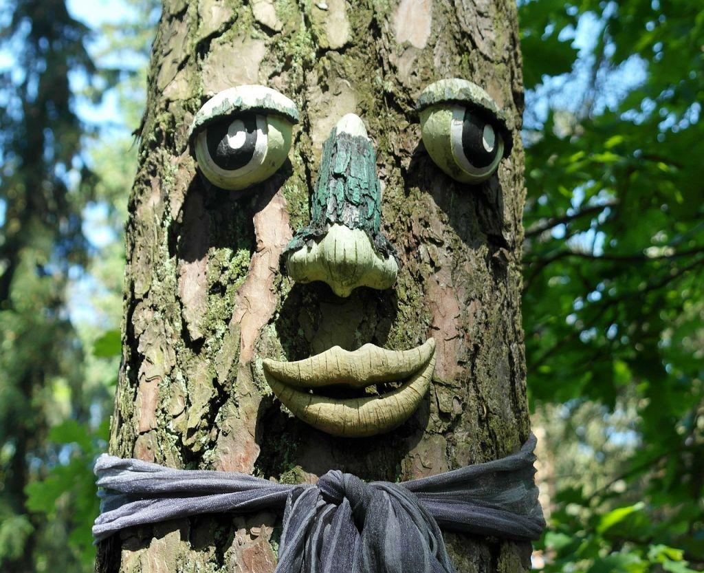tree-114288_1280