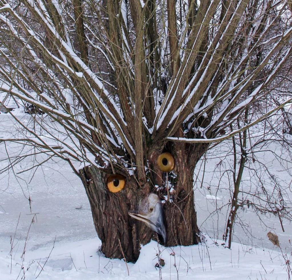tree-471867_1280