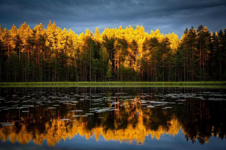 autumn-690715_1280