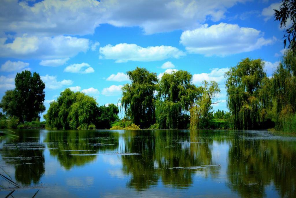 lake-477779_1280