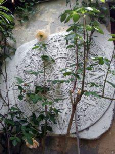 maya-132018_1280