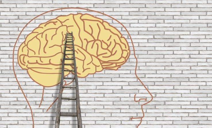 Jak podpořit výkonnost mozku?