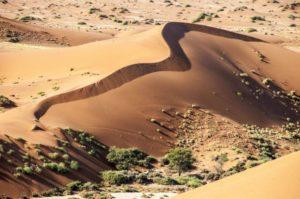 namibia-646902_1280