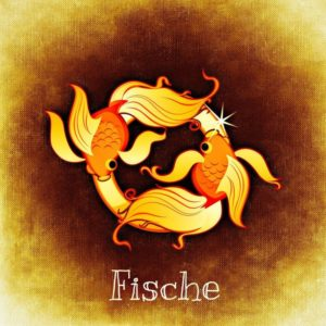 fish-759086_1280