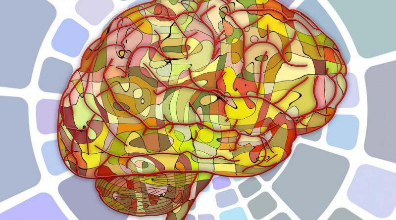 brain-951847_1280