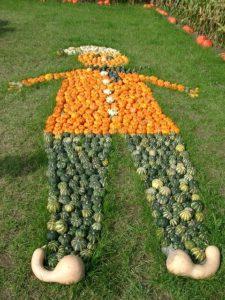 pumpkin-76616_640