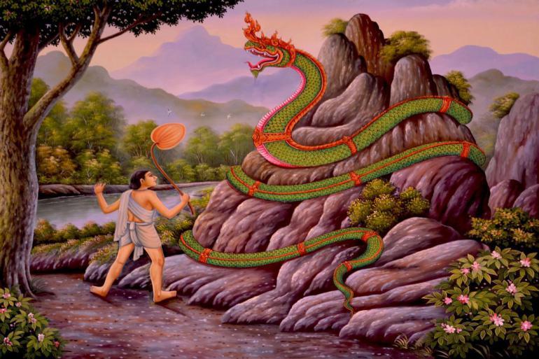 snake-1055963_1920