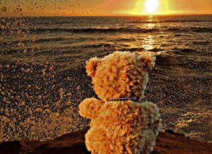 teddy-bear-1144245_1920