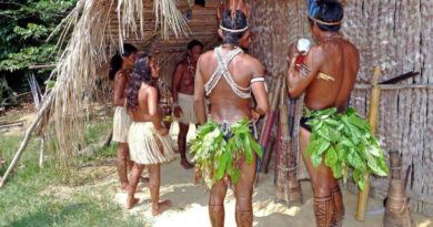 Tajemství ayahuasky a DNA - 1. díl