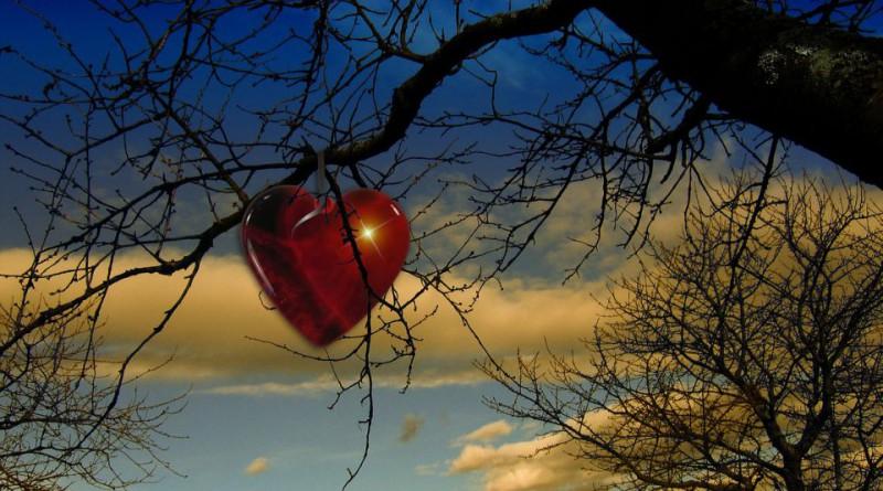 tree-68197_1280