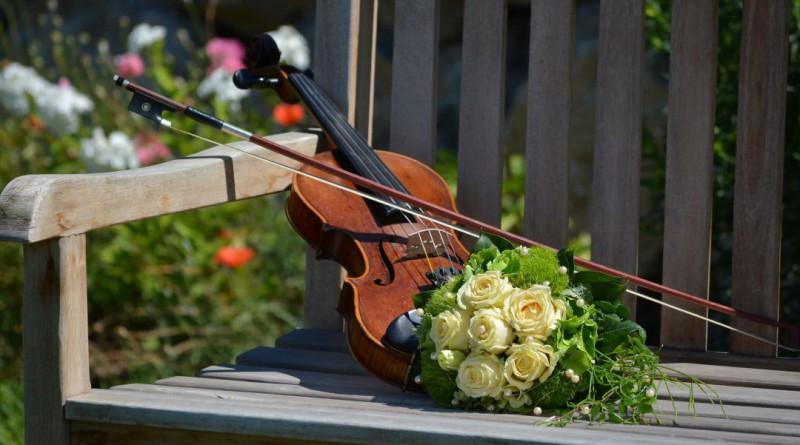 violin-1061240_1920