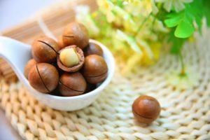 macadamia-nuts-1098170_1920